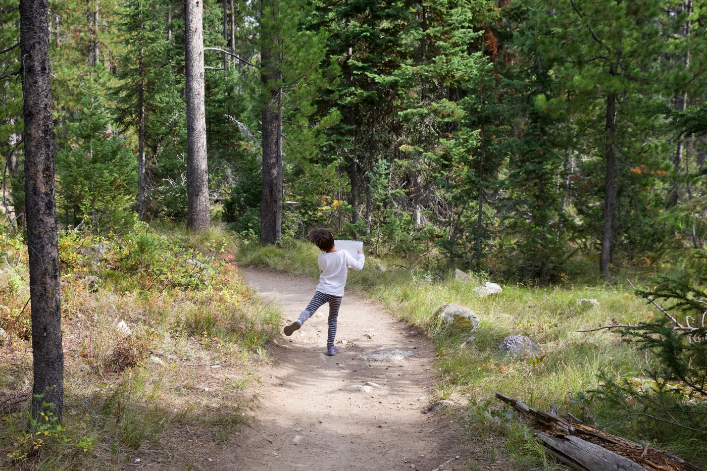 Heidi dancing and skipping through the forest.  Tetons, Wyoming.