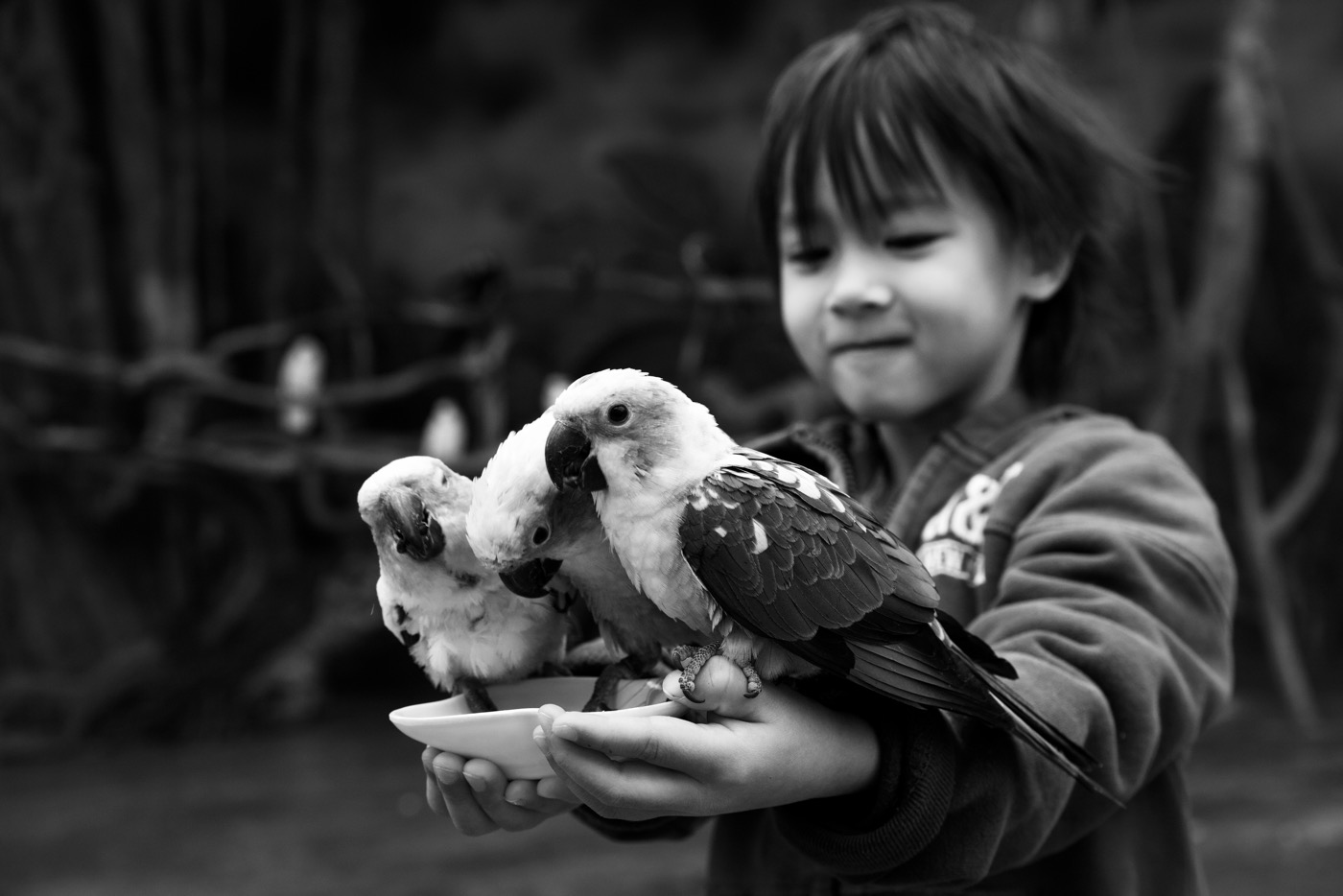 Heidi holding parakeets at the Kunming Zoo
