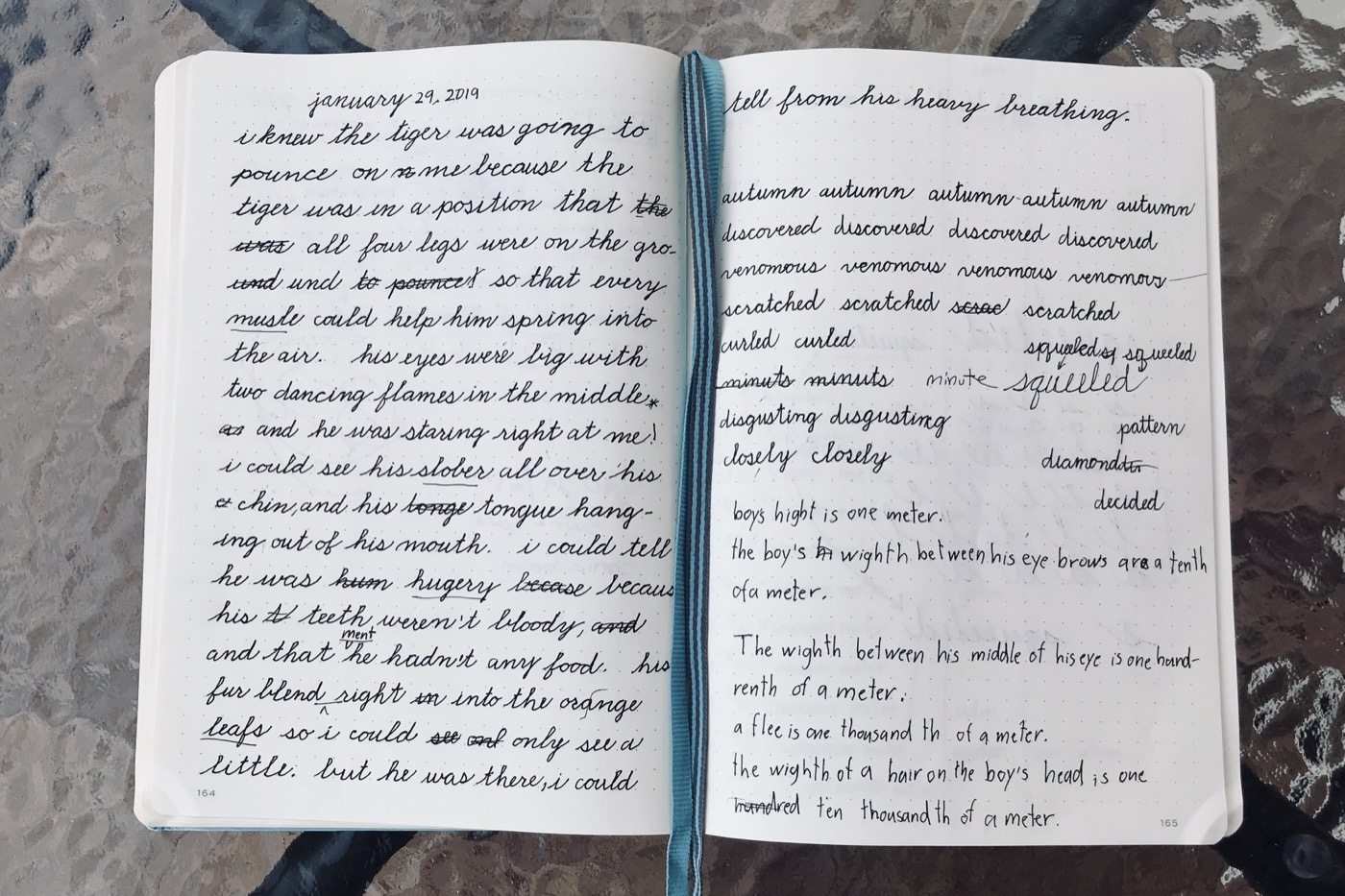 Kai's Journal